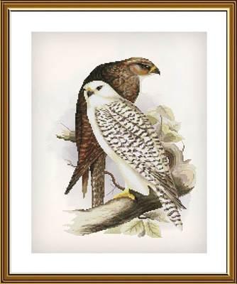 Изображение Гордые птицы