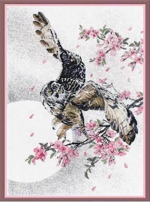 Изображение В цветах сакуры