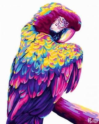 Изображение Попугай поп-арт