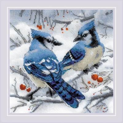 Изображение Голубые сойки