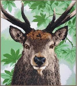 Изображение Гордый благородный олень