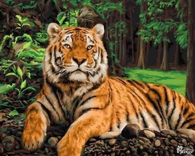 Изображение Хозяин джунглей