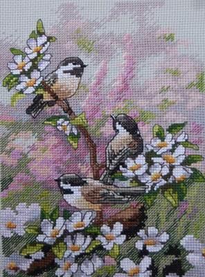 Изображение Синицы весной