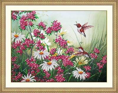 Изображение Колибри и ромашки