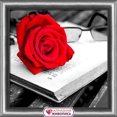 Изображение Роза и книга
