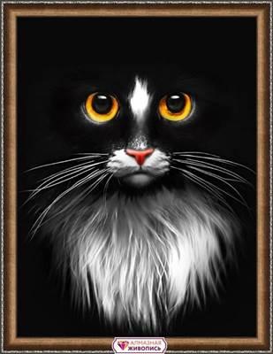 Изображение Черный кот