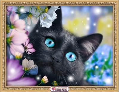 Изображение Черный кот в цветах