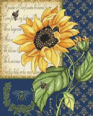Изображение Мелодия подсолнуха (Sunflower Melody)